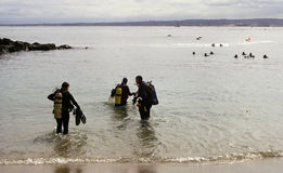 Check out. A trio of divers are about to join their cohorts in an open water check out dive in Monterey,CA stock photo