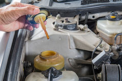 Check power steering oil,Car maintenance,Check  car yourself,Che Stock Photos