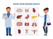 Check your internal organs health poster including two doctors cartoon characters and organs icon set. Vector. Illustration in flat design, medical infographic vector illustration