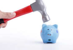 Check your money before use Hold Hammer Stock Photos