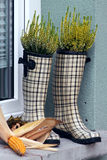Checked rubber boots Stock Photography
