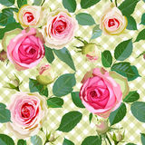 Checked Seamless Pattern with Roses. Royalty Free Stock Photos
