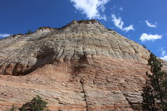 Checker Board Mountain in Zion National Park. Trees in the foreground During a partly cloudy sky Royalty Free Stock Images