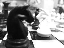 Checkerboardde A Imagens de Stock