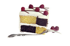 Checkerboard Cake with Raspberries Stock Images