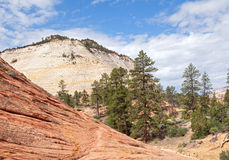 Checkerboard Mesa Royalty Free Stock Image