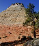 Checkerboard Mesa, Zion Royalty Free Stock Photography
