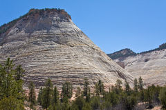 Checkerboard Mesa in Zion Canyon Stock Photography