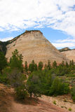 Checkerboard Mesa, Zion Canyon National Park, Utah. Royalty Free Stock Image