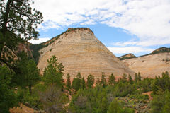 Checkerboard Mesa, Zion Canyon National Park, Utah. Royalty Free Stock Images