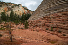 Checkerboard Mesa at Zion. National park in Utah, United States Royalty Free Stock Photography
