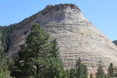 Checkerboard Mesa in Zion National Park. Utah. USA Royalty Free Stock Photography