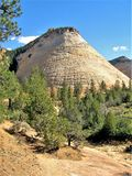 Checkerboard Mesa in Zion National Park Stock Photography