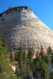 Checkerboard Mesa, Zion National Park, USA Royalty Free Stock Photos