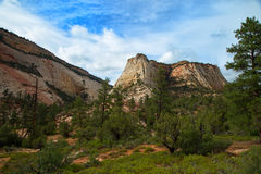 Checkerboard Mesa at Zion. National park in Utah, United States Royalty Free Stock Photo