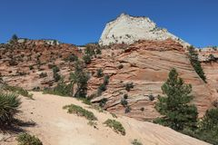 Checkerboard Mesa in Zion National Park Stock Images