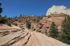 Checkerboard Mesa in Zion National Park. Utah Stock Photo
