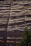 Checkerboard pattern of cross current sandstone layers. Created from fossilized dunes and shifting winds over millions of years, Zion National Park, Utah Stock Images