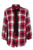 Checkered блузка с связью Стоковые Фотографии RF