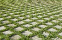 checkered трава Стоковая Фотография RF