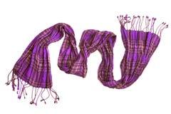 checkered фиолет шарфа Стоковое Изображение