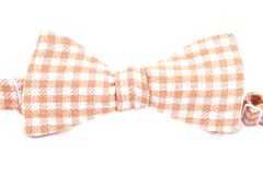 Checkered bow tie isolated. On white background Royalty Free Stock Photos
