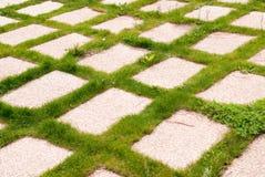 Checkered grass Stock Photos