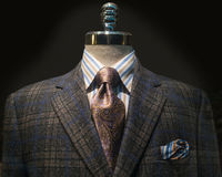 Checkered Jacket, Striped Shirt, Tie (Horizontal). Mannequin with dark brown and blue checkered jacket, striped shirt, purple tie and handkerchief stock photos
