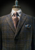 Checkered Jacket, Striped Shirt, Tie (Vertical). Mannequin with dark brown and blue checkered jacket, striped shirt, purple tie and handkerchief Stock Images