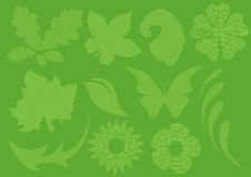 Checkered leaf Stock Photo