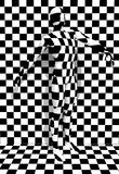 Checkered man Stock Photo