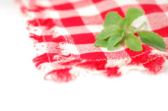 Checkered napkin and stevia. Checkered red and white napkin and green stevia leaves Stock Image