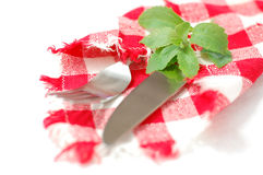 Checkered napkin, stevia and cutlery. Checkered red and white napkin and green stevia leaves with knife and fork Stock Image