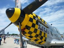 Checkered P51 Mustang Royalty Free Stock Image