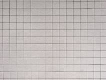 Checkered paper texture background. Geometry or maths notebook checkered paper useful as a background Stock Photos