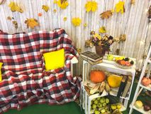 Checkered plaid on an armchair vase, herbarium, green apple on the background of wooden boards and yellow autumn leaves royalty free stock photography