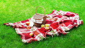 Checkered Plaid Picnic Basket Green Grass Summer. Checkered Plaid Picnic Apples Basket Fruit Green Grass Summer Time Rest Background Design Web Concept Long Stock Photos