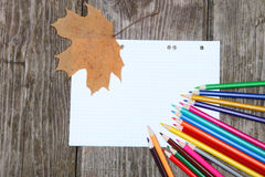 Checkered sheet, maple leaf and pencils Royalty Free Stock Photo