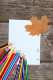 Checkered sheet, maple leaf and pencils Stock Image
