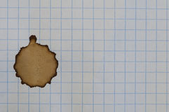 Checkered sheet of paper from a notebook. And coffee stain Stock Photo
