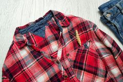 Checkered shirt, spike in the pocket blue jeans. Fashionable concept Royalty Free Stock Images