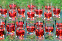 Checkers game for drinkers Royalty Free Stock Photography