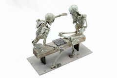 Checkers skeleton model on white background.  Stock Images