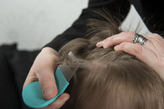 Checking for lice. Mother checking childs head for lice with a comb Royalty Free Stock Photos