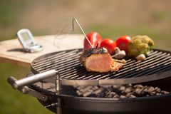 Checking meat. Temperature while grilling, vegatebles on background Stock Photography