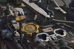 Checking Motor Oil Stock Image