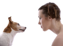Checking it out. Girl and her dog looking at eachother Stock Images
