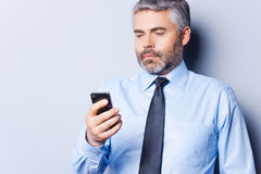 Checking out business messages. Stock Images