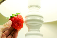 Checking the quality for strawberry Stock Photos