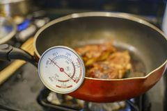 Checking the temperature with thermometer of fry chicken. At home, Los Angeles royalty free stock photography